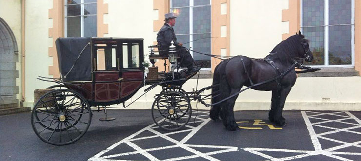 Glenanne Carriage Hire Wedding Carriage